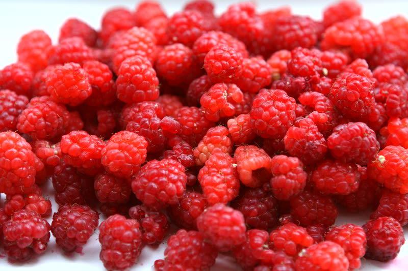 フランボワーズの赤い実、コンフィチュール=ジャムに