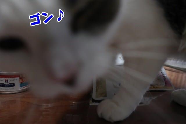 腎臓食オンパレード☆