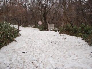雪がある場所もあれば