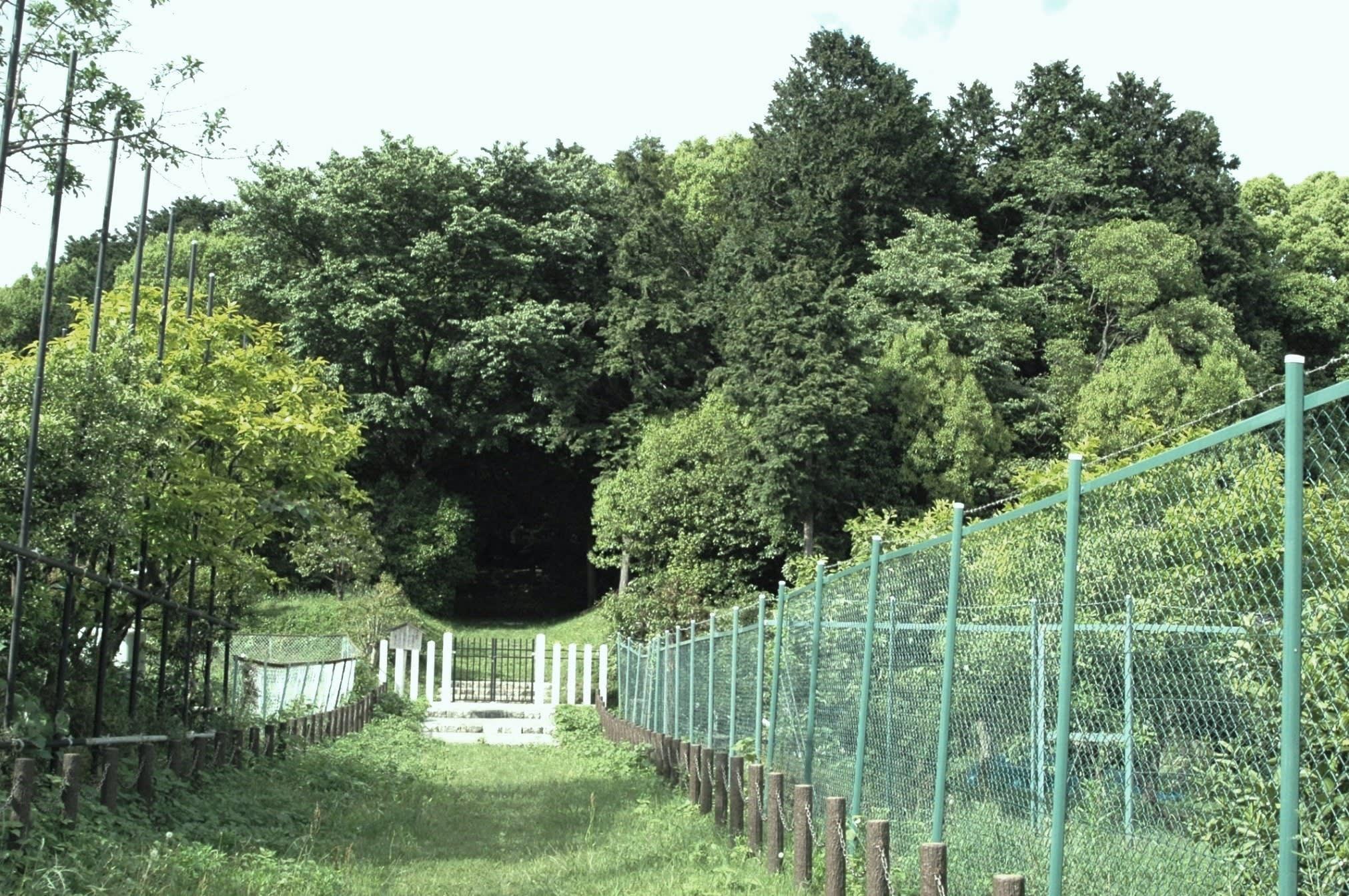 滋賀県大津市・木の岡本塚古墳 - 古墳:探訪