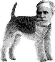 パブロフ の 犬 意味