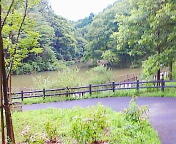 ジオキャッシング「spirit of the pond」