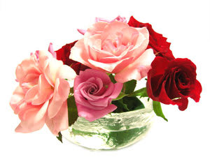 Rosebase