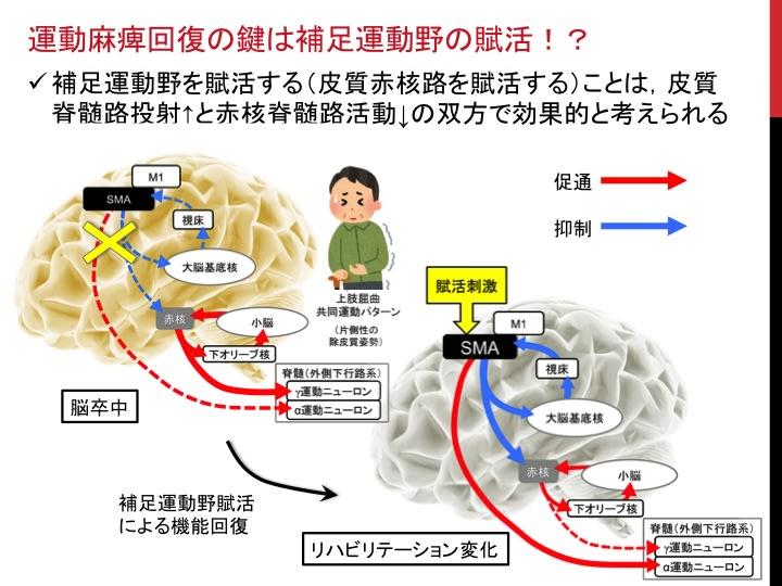 運動麻痺を回復させる脳卒中リハビリテーション戦略ーpart1 ...