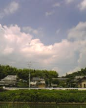 2008_0728_654