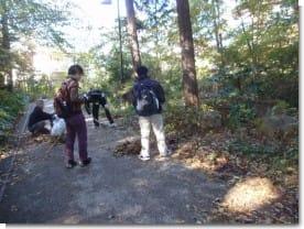 大量の落ち葉と格闘するボランティア