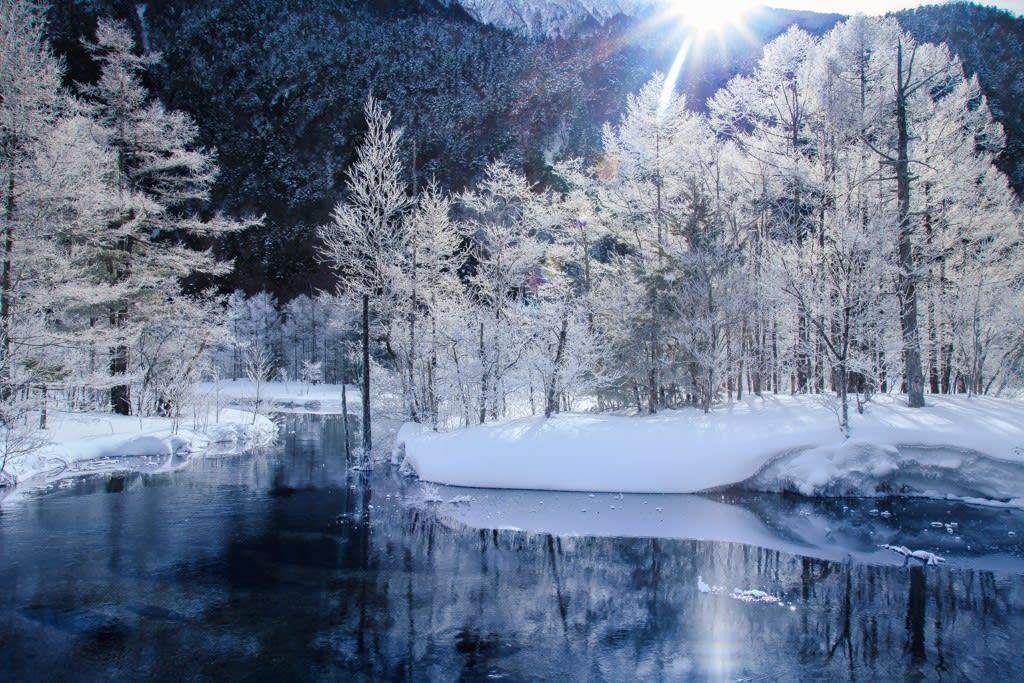 上高地/田代池の霧氷の写真