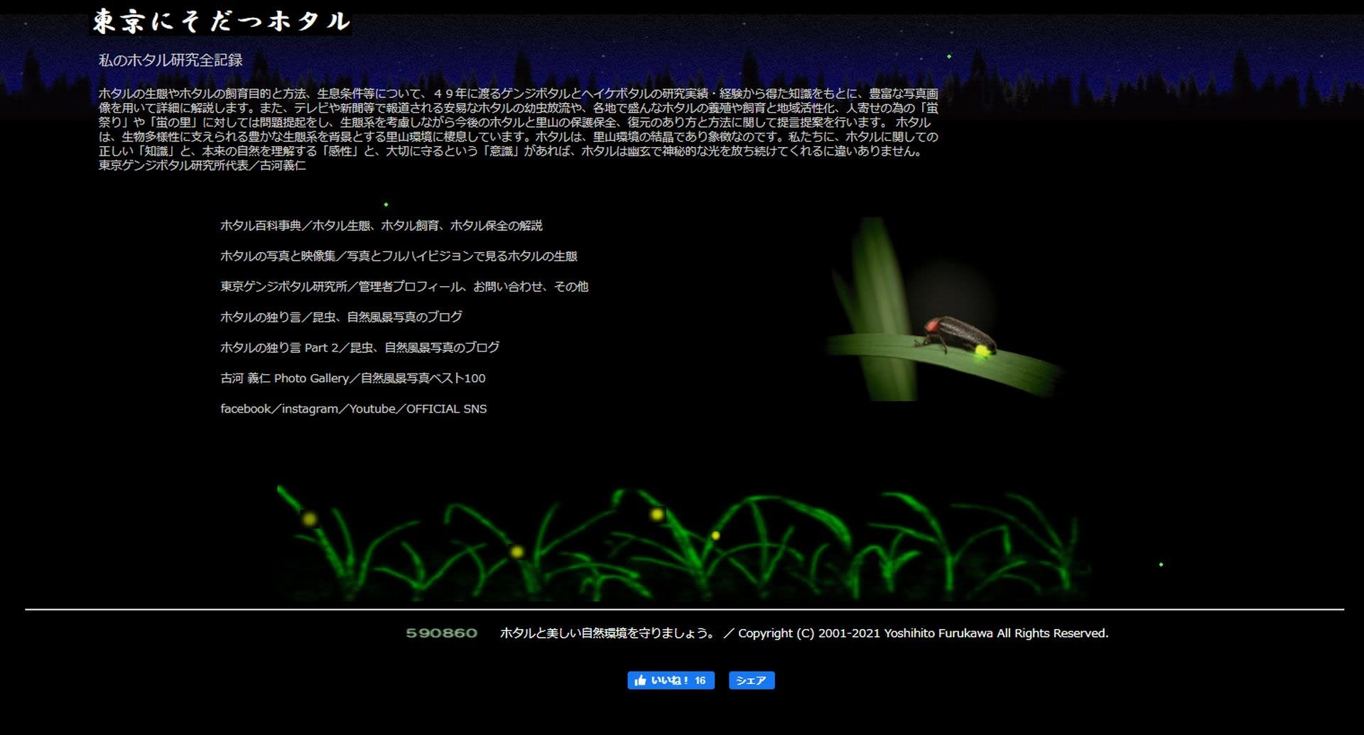 ホームページ東京にそだつホタルの写真