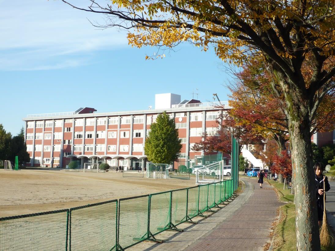 高校 安城