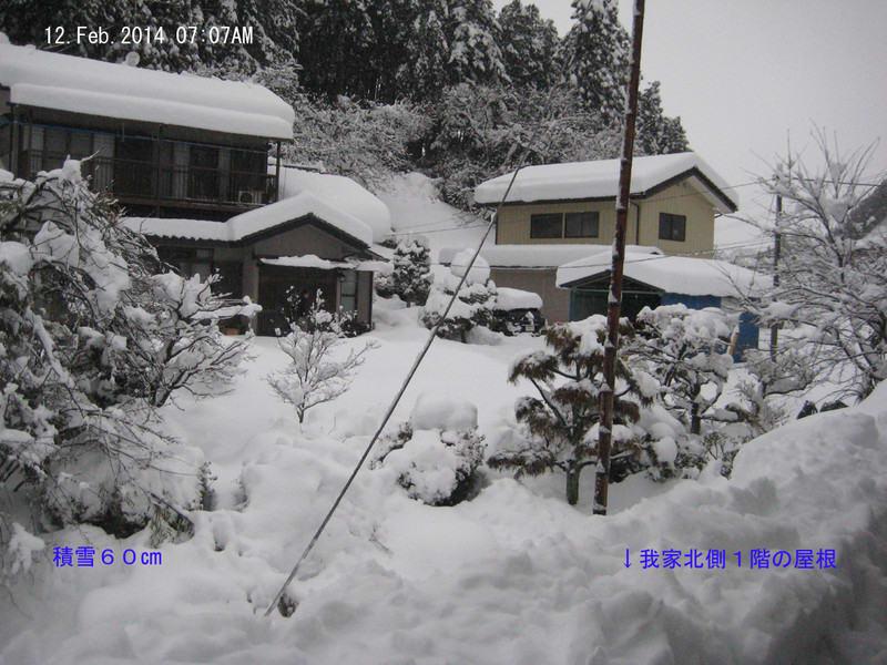 Snow15feb2014a