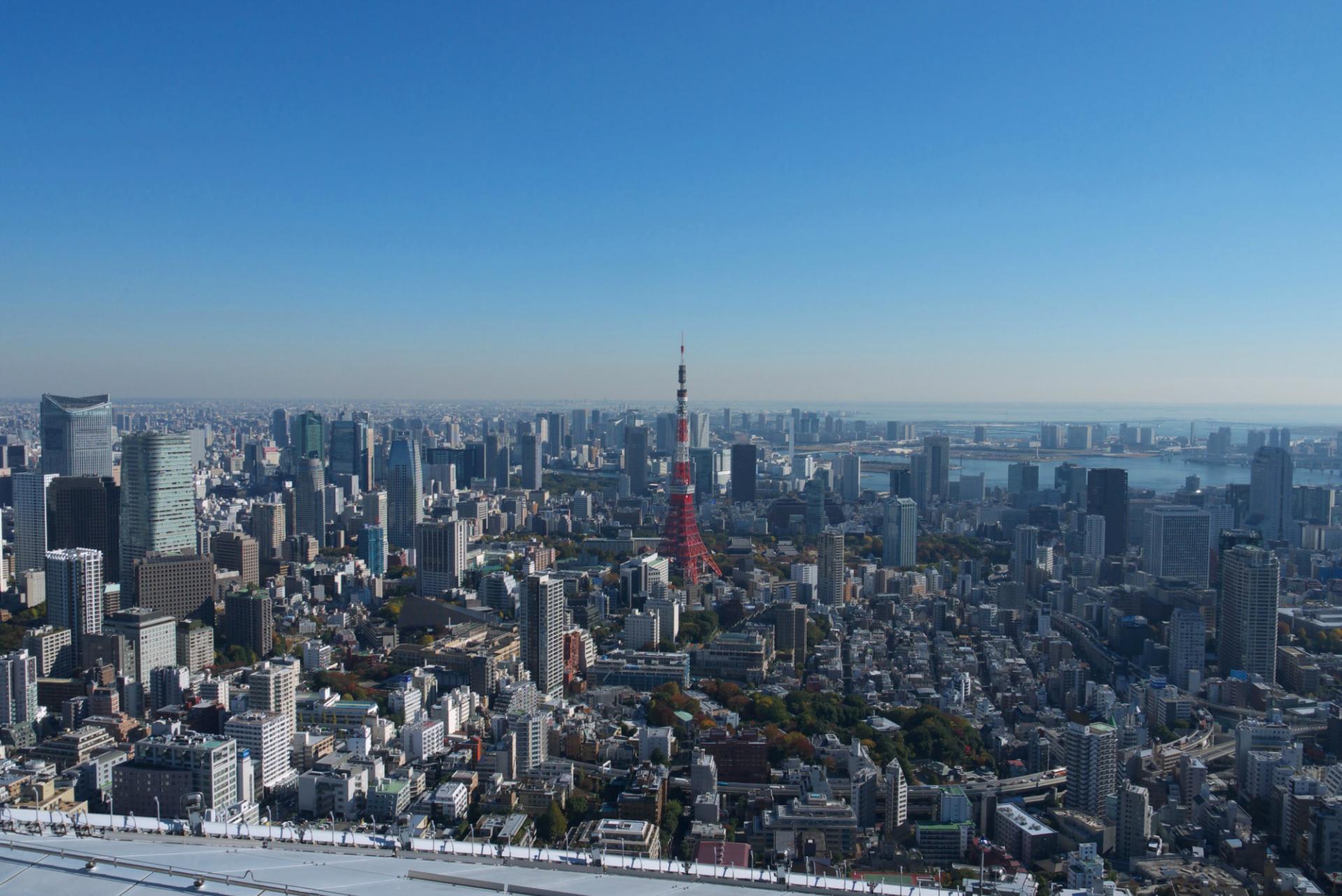 東京風景写真の壁紙 六本木ヒルズ フジテレビ本社ビル 東京スカイツリー 緑には 東京しかない