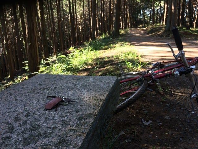 パスハンター ランドナー サイクリング 自転車