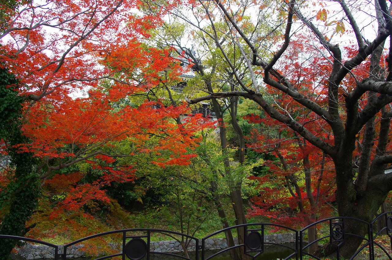 西尾市歴史公園の画像