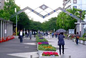 東綾瀬公園 - M.Y 写真工房 旬