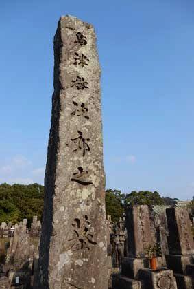 島津啓次郎墓石 - 野のアザミ