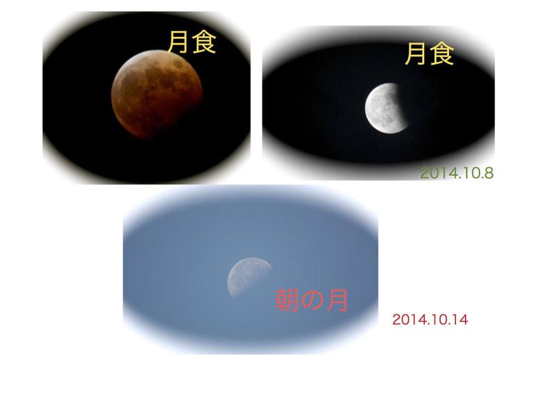 Blog_moon