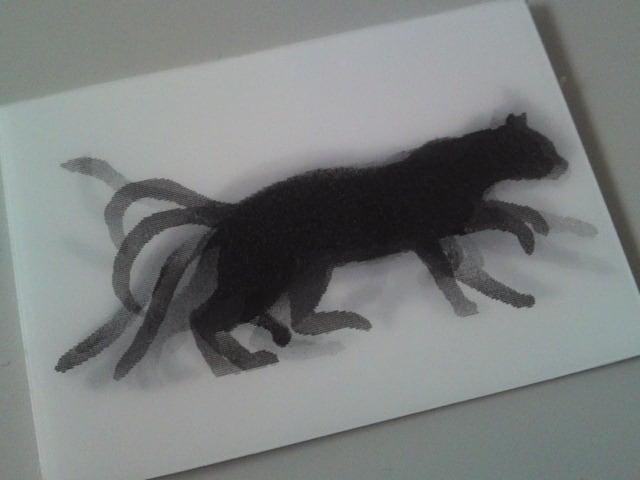 120824_blackcat02
