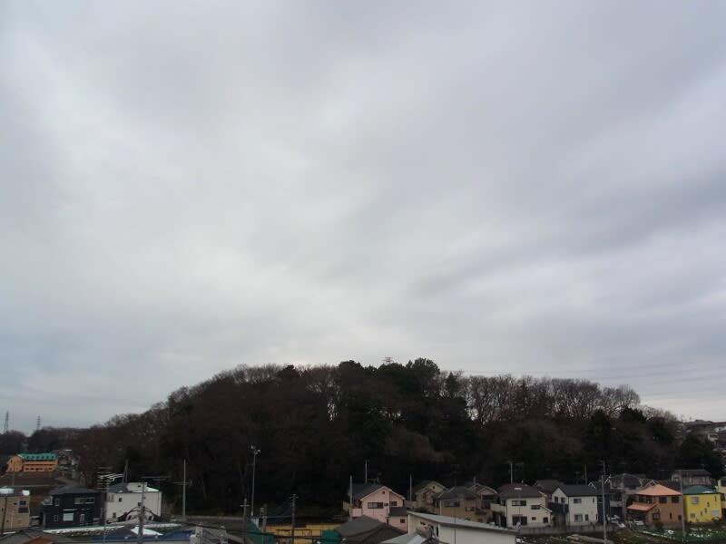 01月23日 根岸台