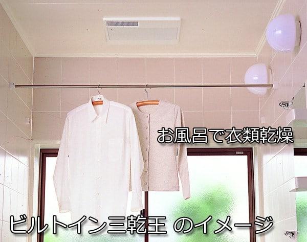 三乾王のイメージ写真