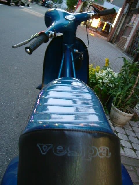 Vespabackside1