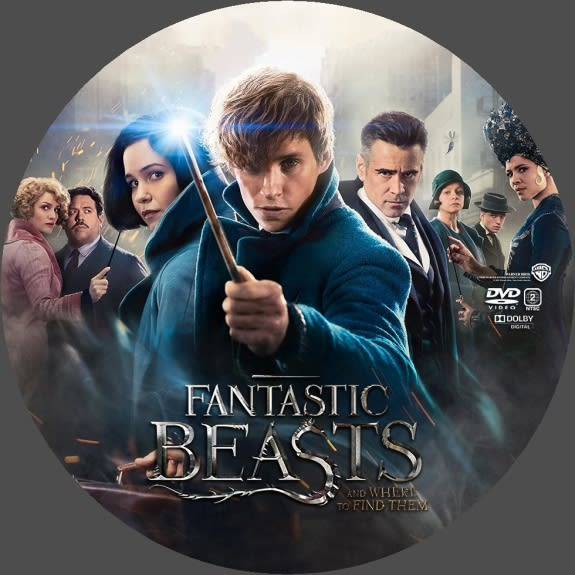 魔法 にかけ られ て dvd