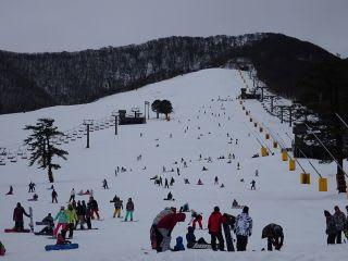 スキーバスが8台。乗用車は30台くらい。