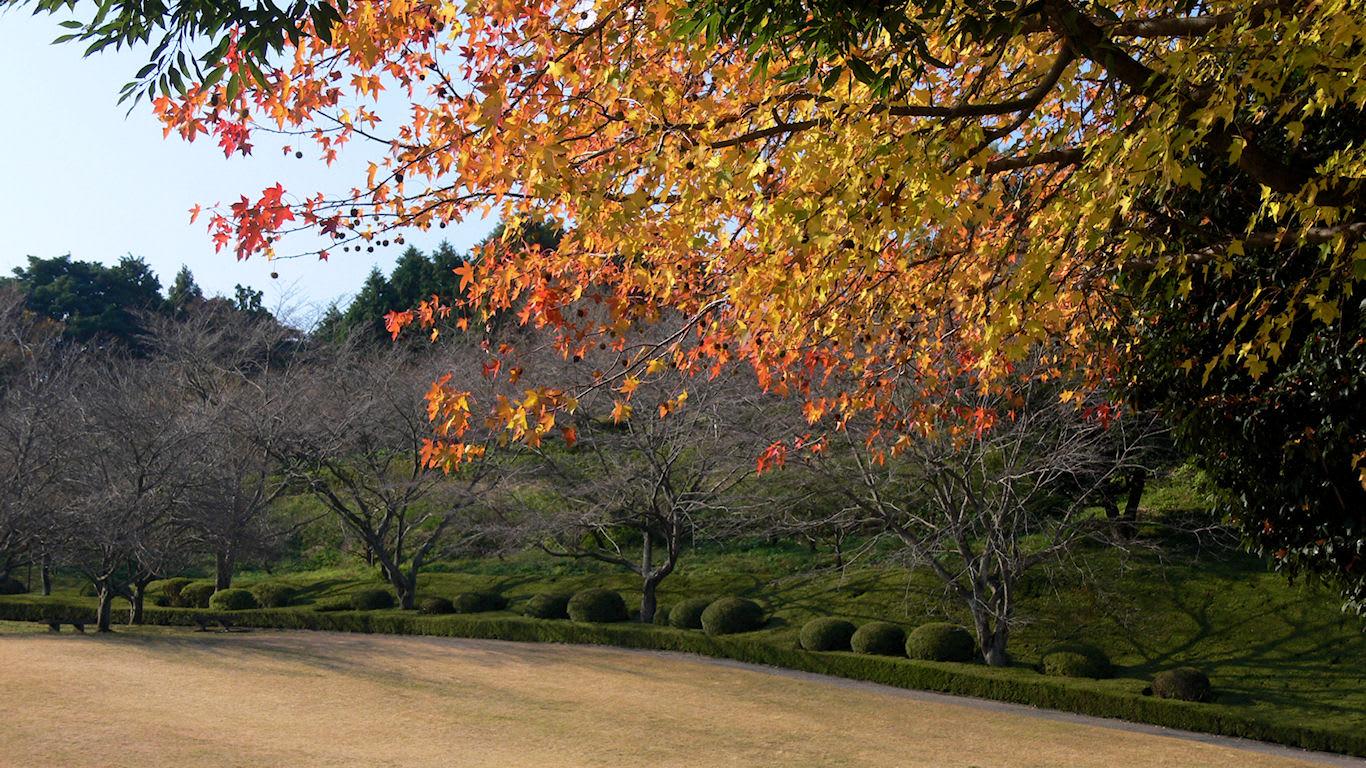 秋の岩本山公園から パソコンときめき応援団 壁紙写真館