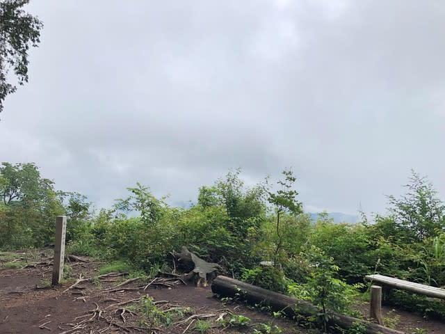 金比羅尾根 麻生山