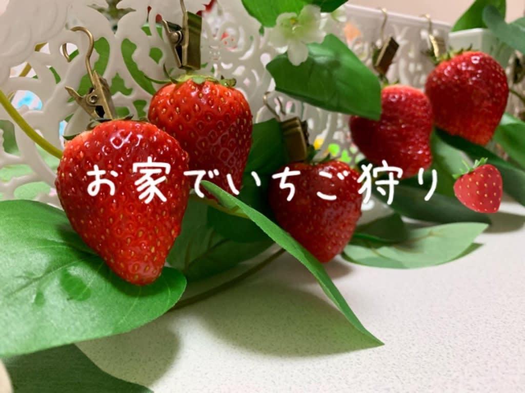 茨城 いちご 狩り 観光果樹園(いちご)
