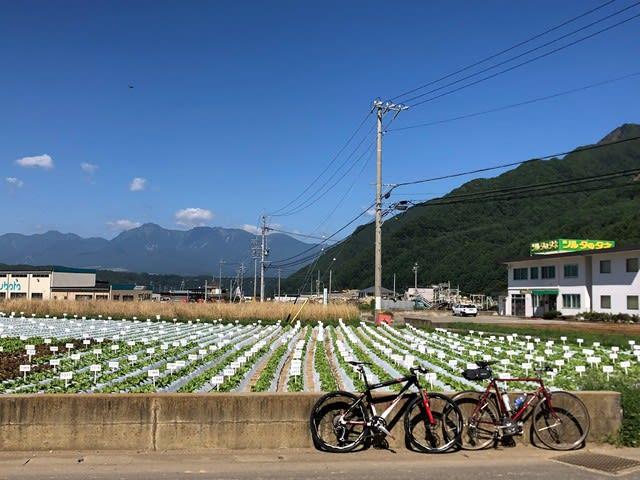 三国峠 中津川林道 サイクリング