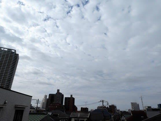 今朝(4月16日)の東京のお天気:曇り
