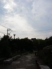 玉川上水第3公園(東方向)