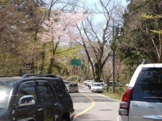 横手道(南光~下山)。両脇に駐車で車が通れない!・・・と言う情報があったので確認に行ったのですが、あまり混雑している様子は見られず。