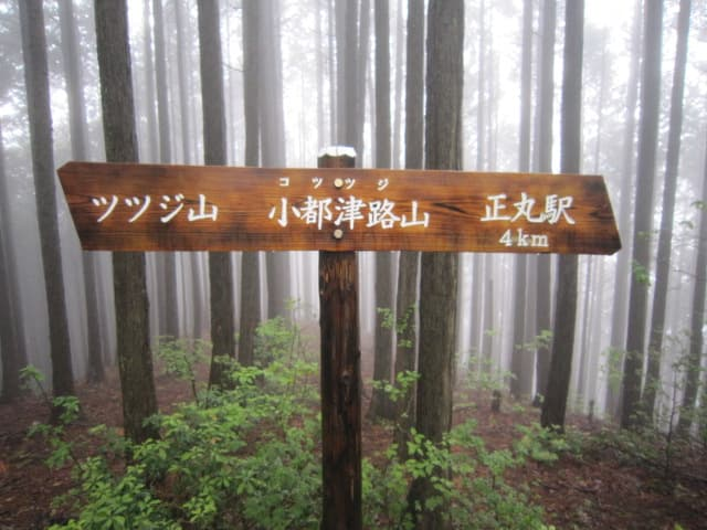 https://blogimg.goo.ne.jp/user_image/3b/66/65c6696c58128cc5ed4e4d71773bbd84.jpg