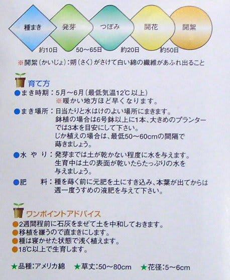 Wata10330344