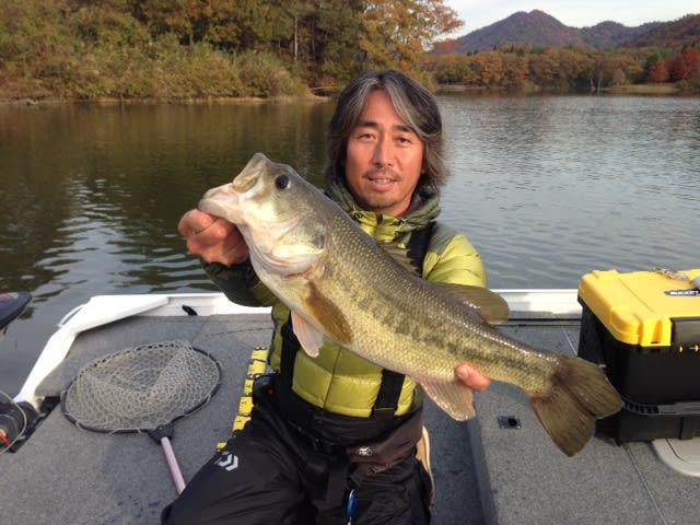 青野ダム情報 11/21