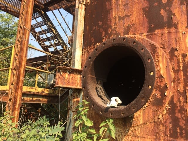 工場 ボパール 爆発 事故 化学