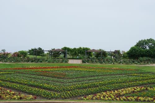 仙台とんこつラーメン一番堂」、仙台市農業園芸セ …