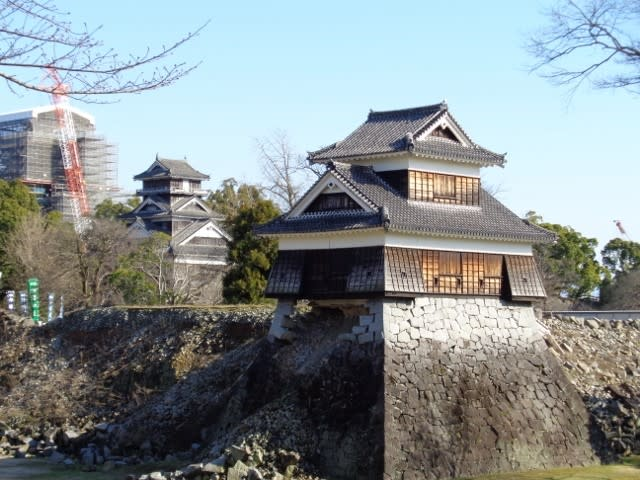 「熊本城 蓮」の画像検索結果