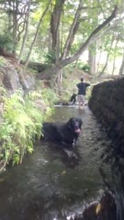 今日もラン→水遊び