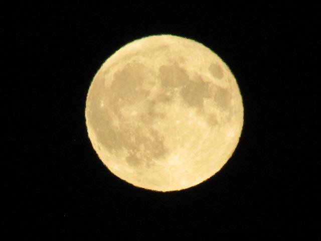 月々 に 月 見る 月 は 多 けれど