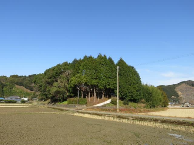 korosukeの散歩日記