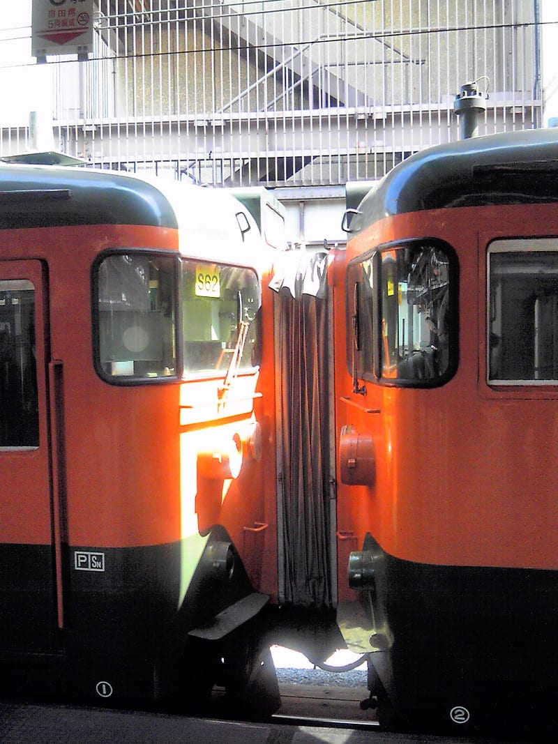 懲りもせず10<br />  両湘南色113<br />  系電車