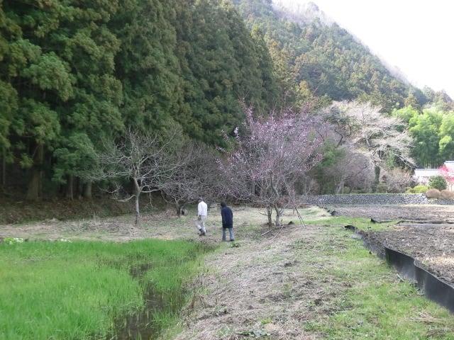 貯水池の脇を歩く