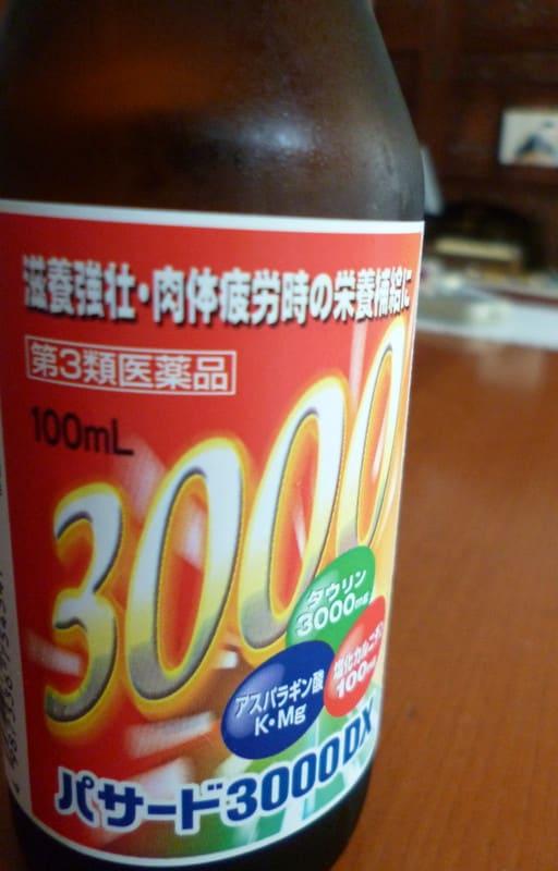 P1060065ipponn_2