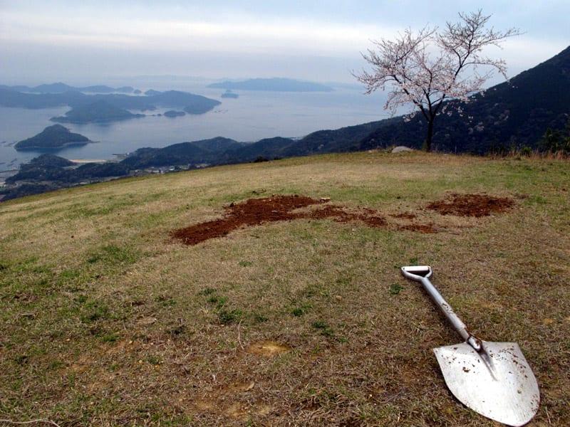 Inoshishi_lawn