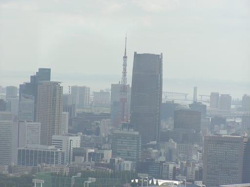 東京都庁 展望室