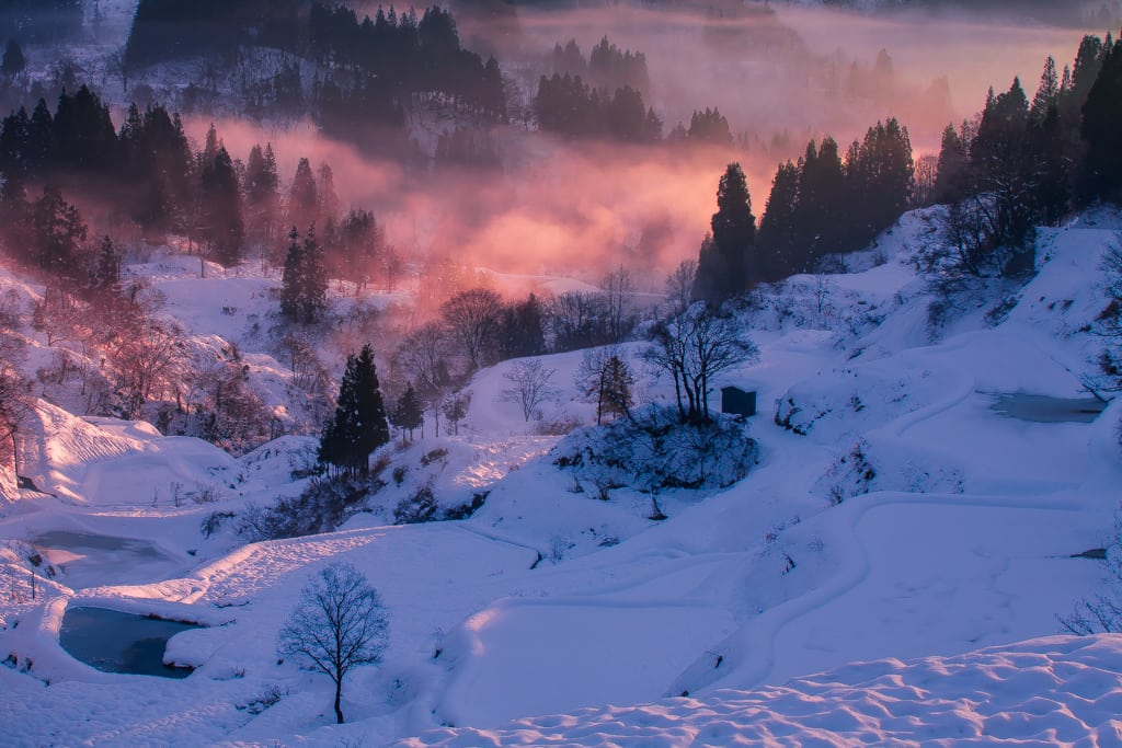 蒲生棚田 冬風景の写真