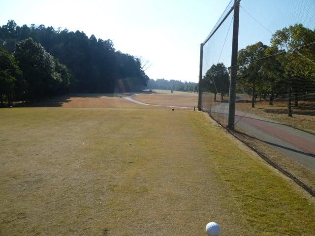 2013年12月のブログ記事一覧-猫とマンガとゴルフの日々