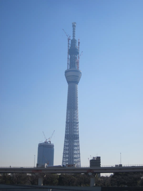 Tokyo_sky_tree2